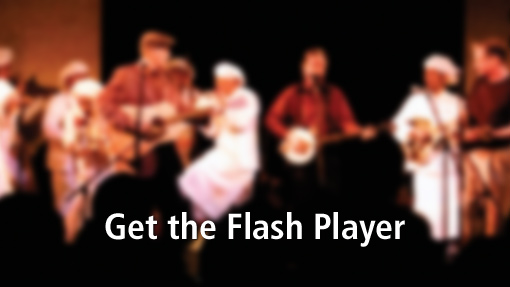 Get the Flash Player